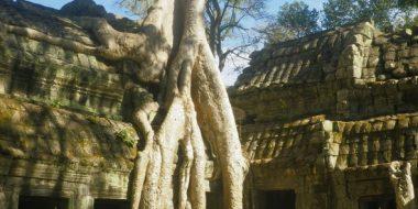 Ankoras templis