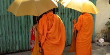 Budistu muki