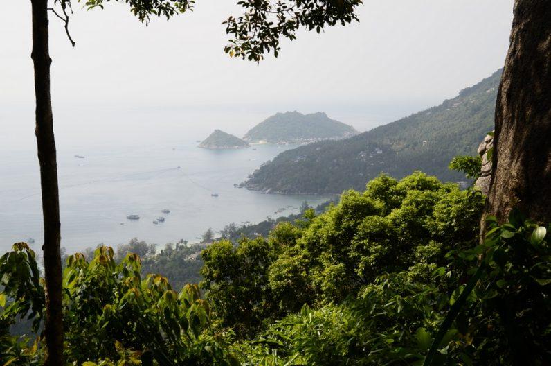 Snorkelēšanas paradīze ir Ko Tao sala Taizemē